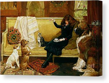 Cats And Dogs Canvas Prints