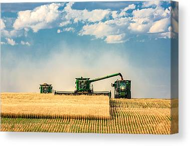 Harvest Canvas Prints