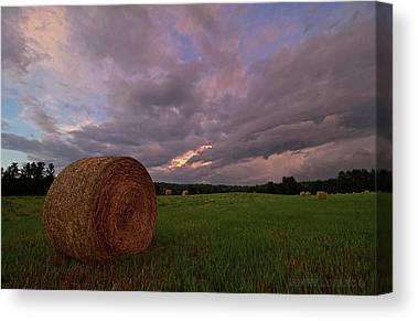 Hay Bales Canvas Prints