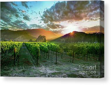Yountville Canvas Prints