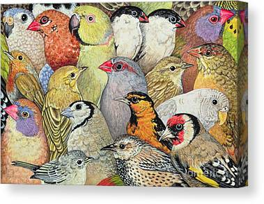 Bird Canvas Prints