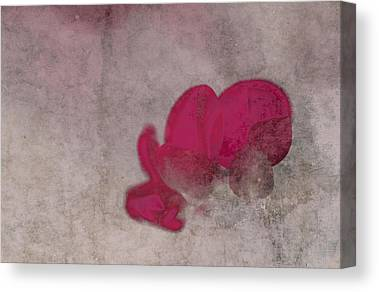 Fushia Photographs Canvas Prints
