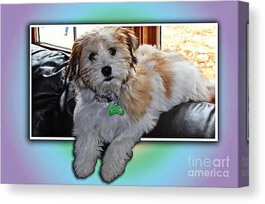 Yoshi Puppy Canvas Prints