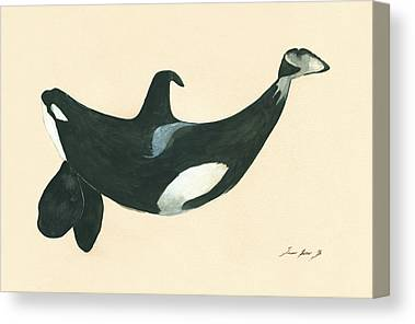 Blackfish Canvas Prints