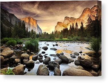 Nature Scene Canvas Prints