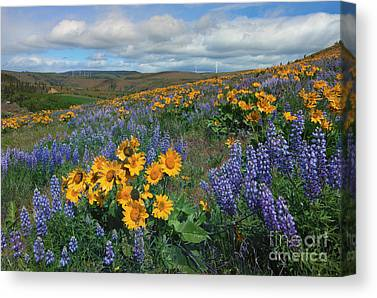 Kittitas Valley Canvas Prints