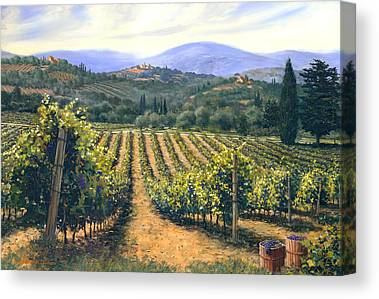 Chianti Vines Canvas Prints