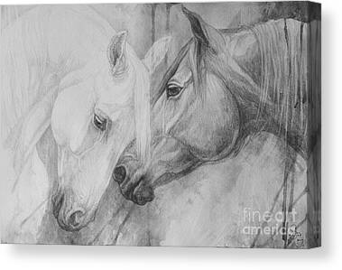 Black And White Horses Canvas Prints