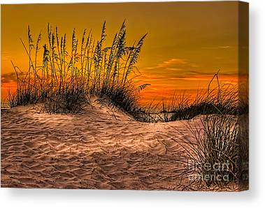 Footprints In The Sand Canvas Prints
