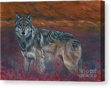 Wolf Pics Canvas Prints