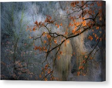 Freezing Photographs Canvas Prints