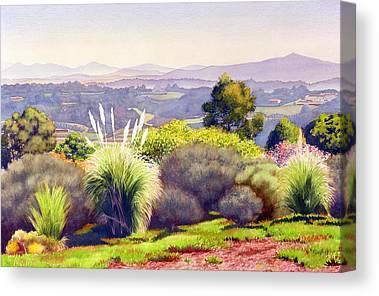 Pampas Grass Canvas Prints