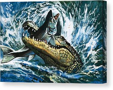 Alligator Canvas Prints