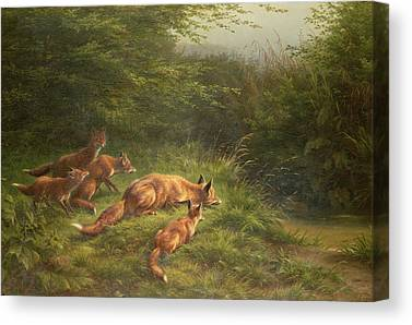 Fox River Canvas Prints