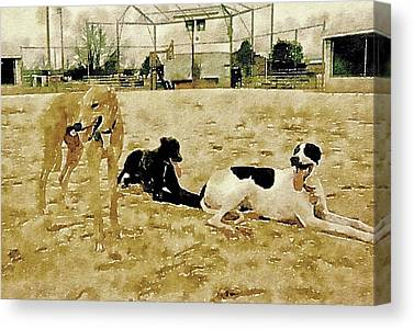 Rescued Greyhound Digital Art Canvas Prints