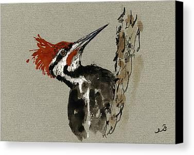 Woodpecker Canvas Prints