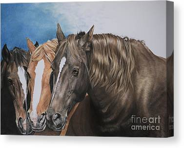 Red Dun Horse Canvas Prints