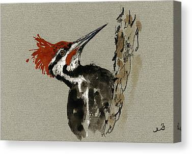 Woodpecker Canvas Prints