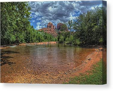 Brown White Sedona Trees Canvas Prints