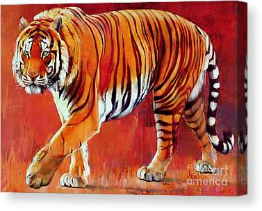 Tiger Canvas Prints