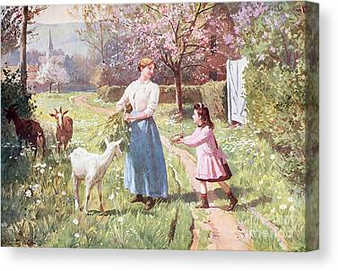 Country Life Paintings Canvas Prints