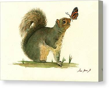 Gray Squirrel Canvas Prints