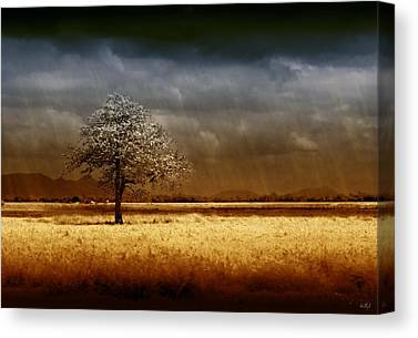 Stormy Weather Canvas Prints