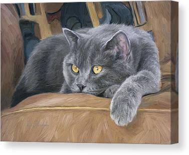 Golden Eye Cat Canvas Prints