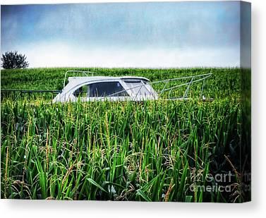 Corn Maze Canvas Prints