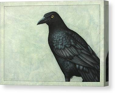 Raven Drawings Canvas Prints
