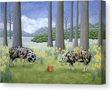 Pig Canvas Prints