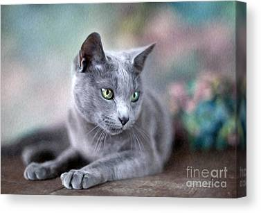 Purebred Paintings Canvas Prints