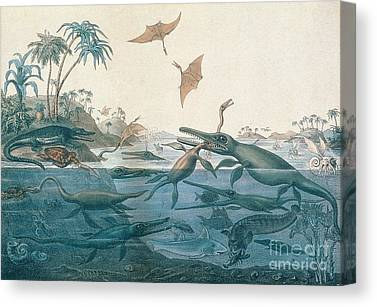 Prehistoric Canvas Prints