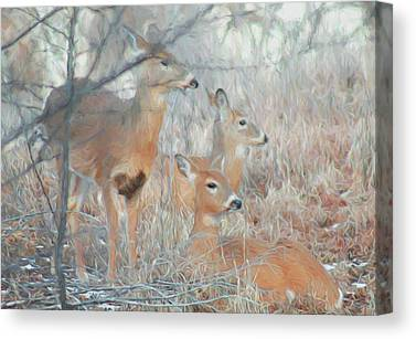 Nature Center Digital Art Canvas Prints