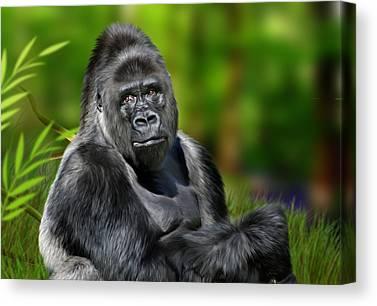 Ape. Great Ape Canvas Prints