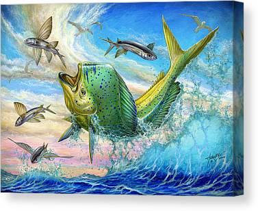 Mahi Mahi Canvas Prints