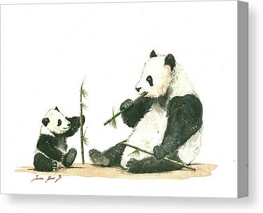 Panda Cub Canvas Prints