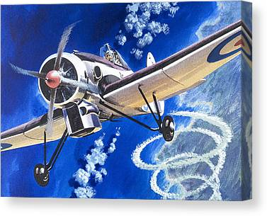 High Altitude Flying Canvas Prints