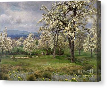Wild Orchards Canvas Prints