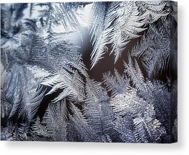 Ice Crystal Canvas Prints