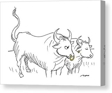 Gold Earrings Drawings Canvas Prints