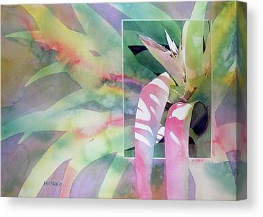 Epiphyte Canvas Prints