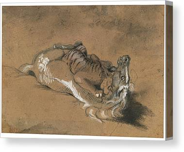 Tiger Attacks A Horse Paintings Canvas Prints