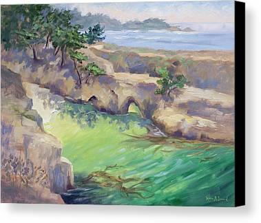 Point Lobos Limited Time Promotions