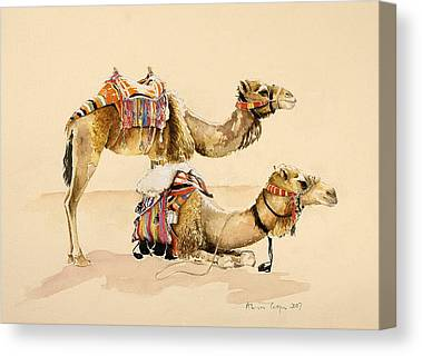Hump Canvas Prints