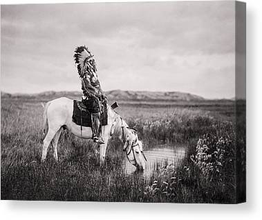 Horse Galloping Canvas Prints