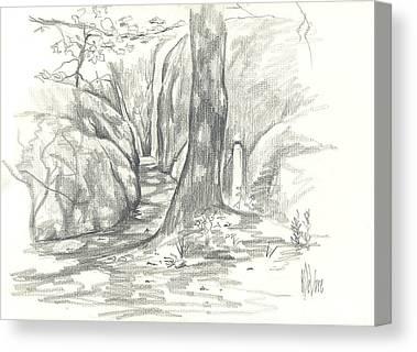 Passageway At Elephant Rocks Canvas Prints