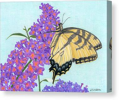 Tiger Swallowtail Canvas Prints
