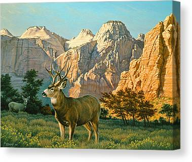 Canyon Country Canvas Prints