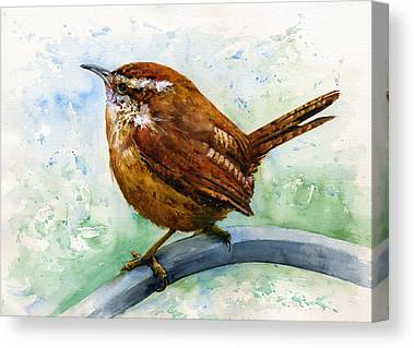 Wren Canvas Prints